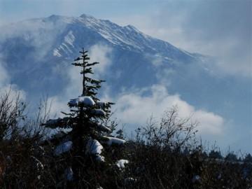 からだ一面 真っ白に雪を被り、ますますスケールの大きい山容をアピールしていますね