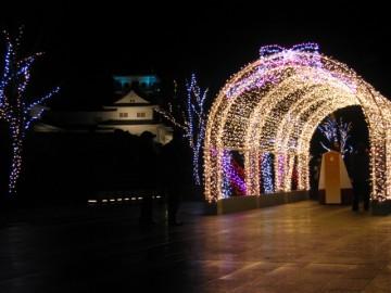 バックに富山城がライトアップ。
