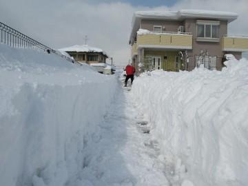雪がこんなに深いんです。玄関から通りに出るまでがこんなに遠かったかなと思う位大変なんです!じゃなく、大変でしたねぇ・・^^;          んで