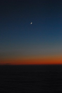 落日と共に、月が出て来ました。