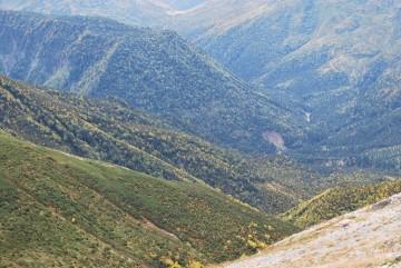 """""""ここの紅葉はきれいだねぇ・・"""" と、立山方面から来た登山者が、驚いていました。ホント、今年はきれいです。"""