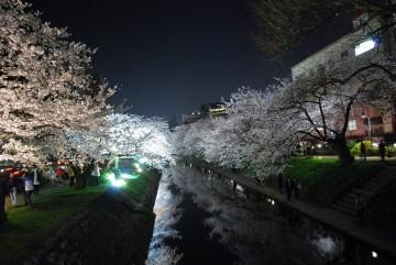 松川の水面に映る夜桜お七♪♪・・ じゃ無くて、ただの夜桜でした (^_-)