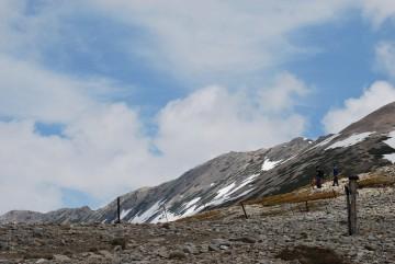 稜線には残雪無し。薬師岳の山頂がはっきりと見える。