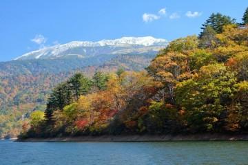 紅葉真っ盛りの有峰湖から「冠雪の薬師岳」。聞きしに勝る、三段紅葉。白、赤、緑‥きれい!